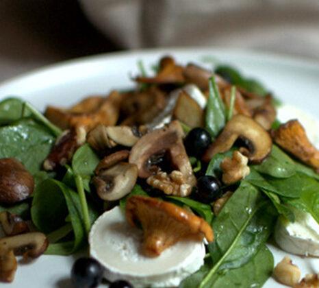 Pilzsalat mit Blaubeeren  FREE MINDED FOLKS
