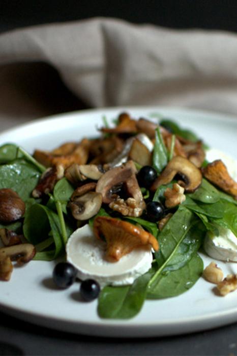 Pilzsalat mit Blaubeeren |FREE MINDED FOLKS