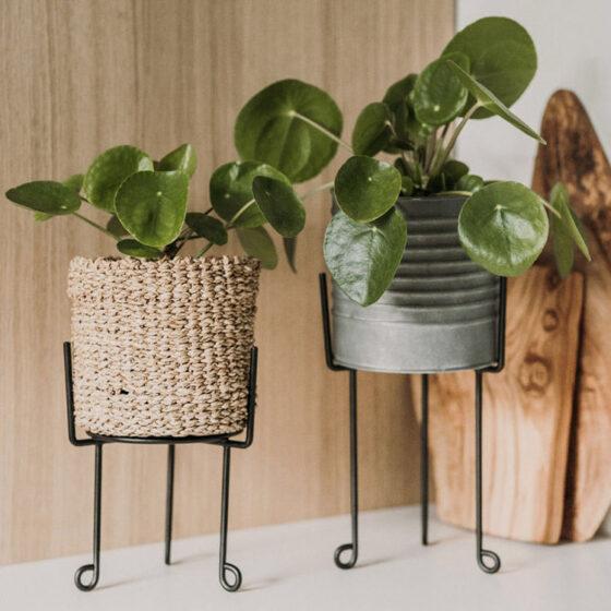 Pflanzenhalter aus Metall
