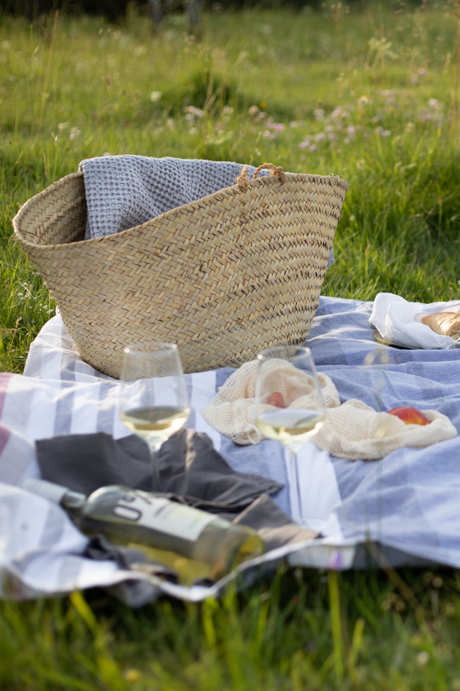 Picknick Rezepte und Ideen |FREE MINDED FOLKS