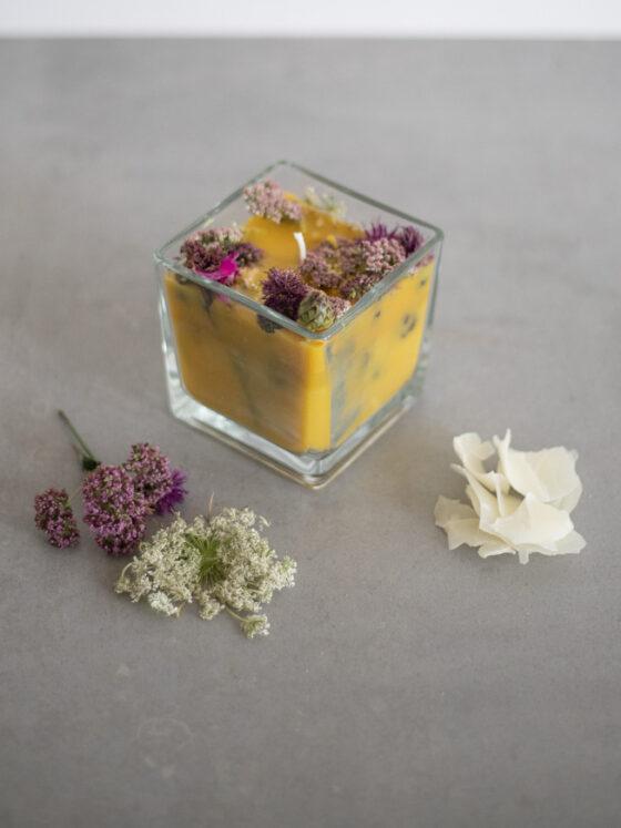Kerzen selber machen | FREE MINDED FOLKS